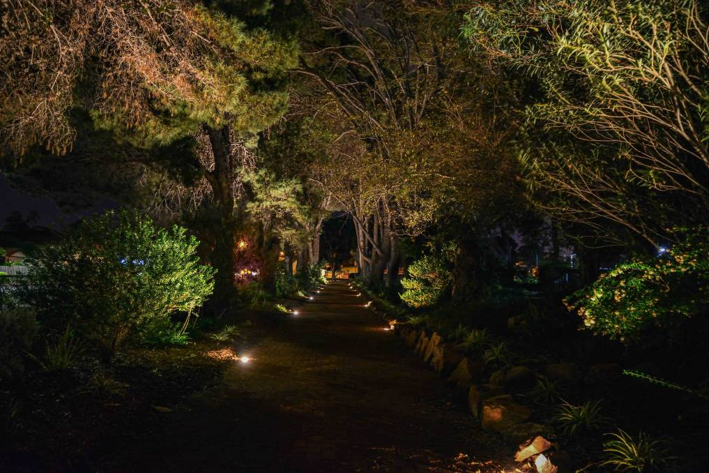 LIGHT THE NIGHT: The Ada Ryan Gardens have been transformed into a beautiful spectacle at night thanks to new in-ground lighting.
